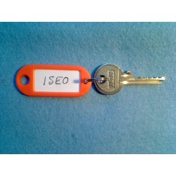 Iseo 5 pin bump key