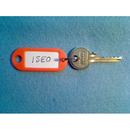 Iseo 5 pin bump key