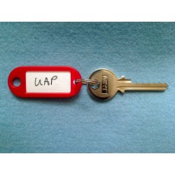UAP 6 pin bump key