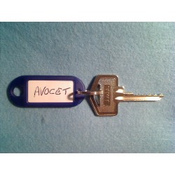 Avocet 6 pin bump key