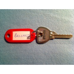 Bricard 5 pin bump key
