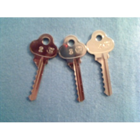Lockwood 6 pin bump key set (3 key)