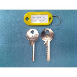 Universal 6 pin bump key set (2 x right keys)
