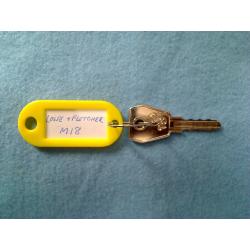 L&F M18 key